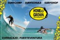 Homegrown Surfcamp (Fuerteventura, Spain)