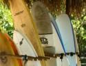 Oasis Surf Camp (Santa Catalina, Panamá)