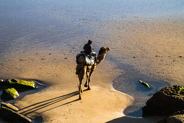Surf Truck Hotel - Your surf road trip through Morocco